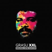 Drumul spre succes-Deluxe Edition - de Grasu XXL
