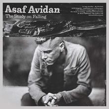 The Study on Falling - de Asaf Avidan