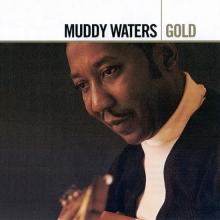 Gold - de Muddy Waters