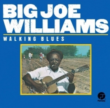 Walking Blues - de Big Joe Williams