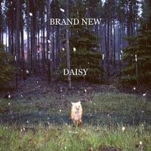 Daisy - de Brand New