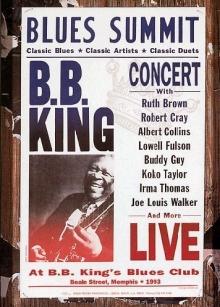 Blues Summit - de BB King