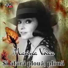 Si afara ploua,ploua..... - de Marina Voica