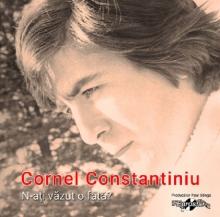 N-ati vazut o fata? - de Cornel Constantiniu