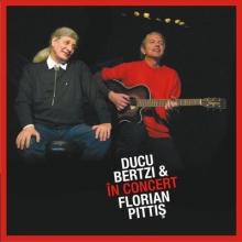 In concert - de Ducu Bertzi & Florian Pitis
