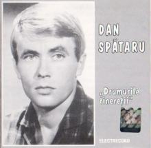 Drumurile tineretii - de Dan Spataru