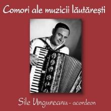 Comori ale muzicii lautaresti - de Sile Ungureanu